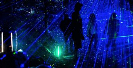 نمایش عظیمی از چراغ ها در باغ وحش تورنتو